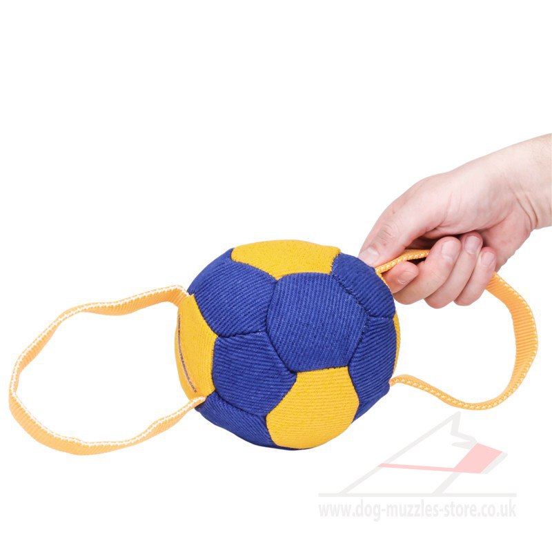 Dog Ball Toy With Handles