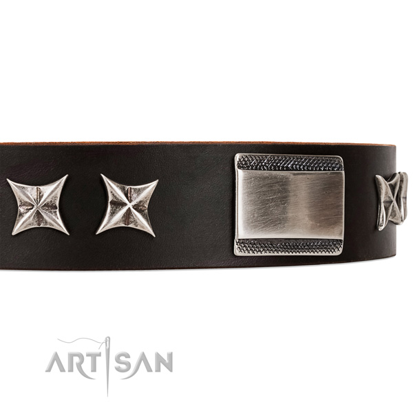 buy chocolate brown dog collar Artisan