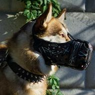 Closed Dog Muzzle for Siberian Husky Dog Training and Walking