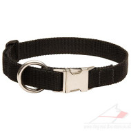 Nylon Collars for Dogs New 2014 | New Dog Collar with Buckle