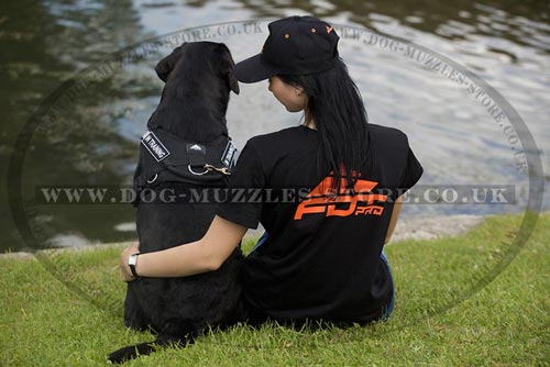 Dog Training T-Shirt for Sale