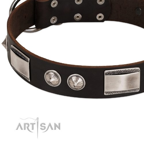 dark brown leather dog collar FDT Artisan