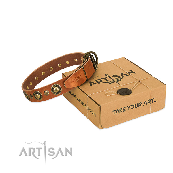 studded dog collar Artisan