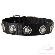 Designer Dog Collar with Silver Medals | Vintage Dog Collar