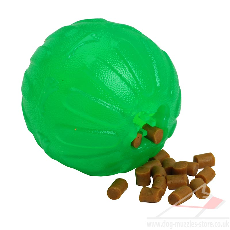 Ineractive Dog Chew Ball Treat Dispenser