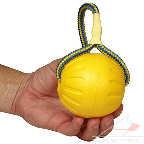 dog fetch toy for large dogs