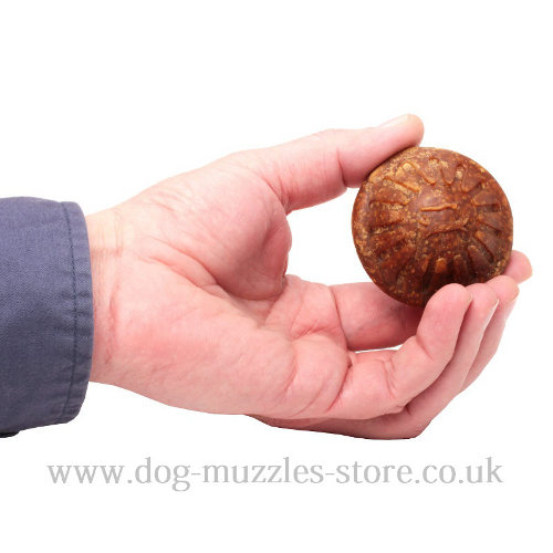 dog treat for tough dog toys