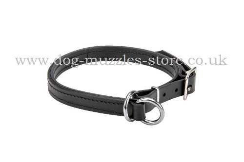 2 Ply Leather Dog Collar Choker