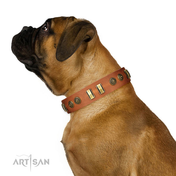 Bullmastiff Tan Leather Dog Collar