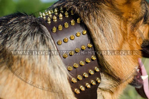 german shepherd collars