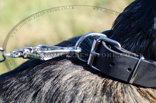 buy dog collars for German Shepherd