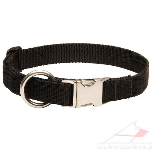nylon collars for dogs
