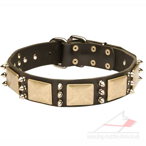 leather dog collar for bulldog