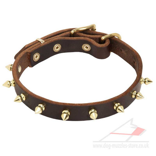 Universal dog collar made of natural leather