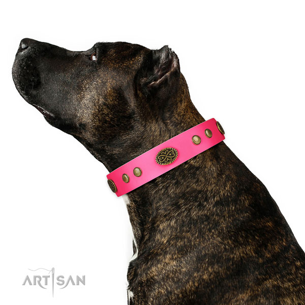 Amstaff Pink Dog Collars for Large Dogs Artisan