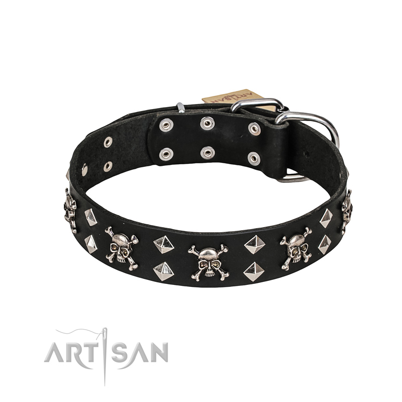 Black Leather Dog Collar With Skulls And Bones