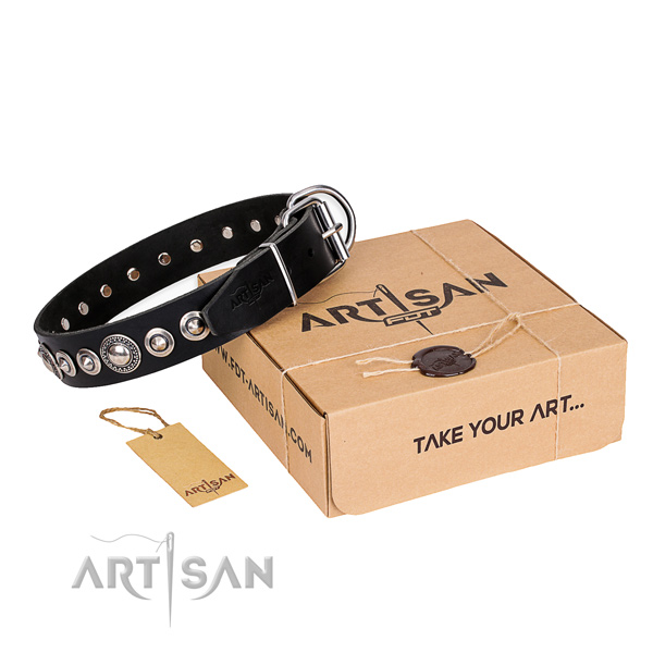 Leather Collar for Dogs buy uk