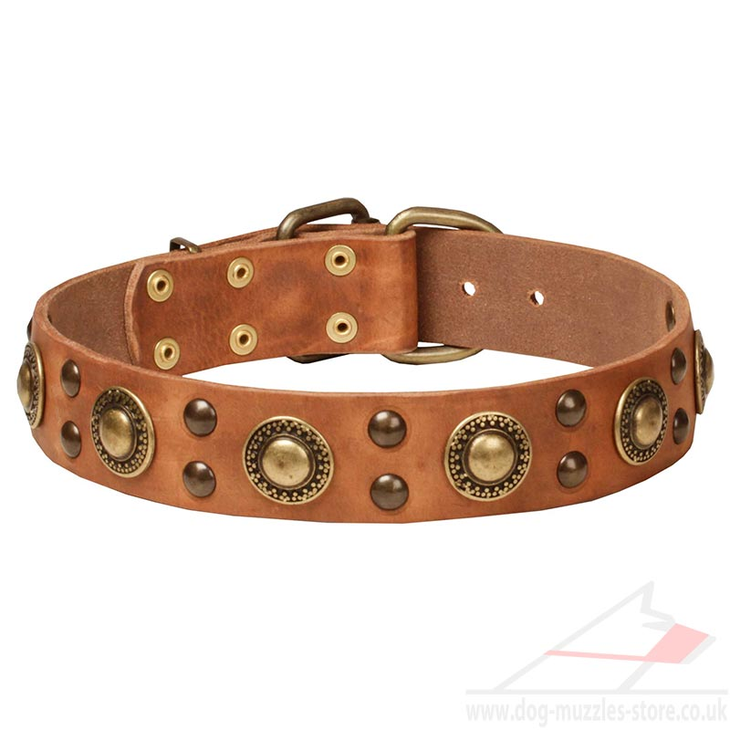 designer dog collars - photo #6