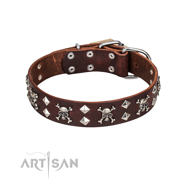 40 mm Artisan Dog Collar buy online