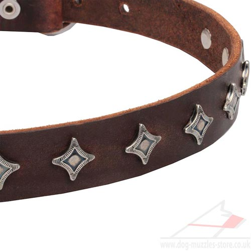 Brown Leather Dog Collar Necklace