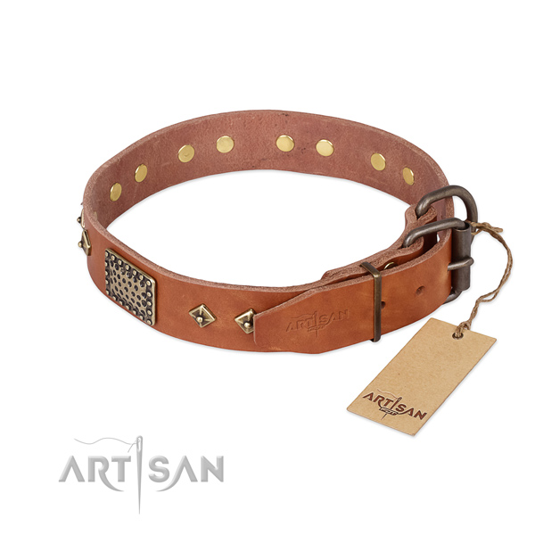 Designer Dog Collar buy uk