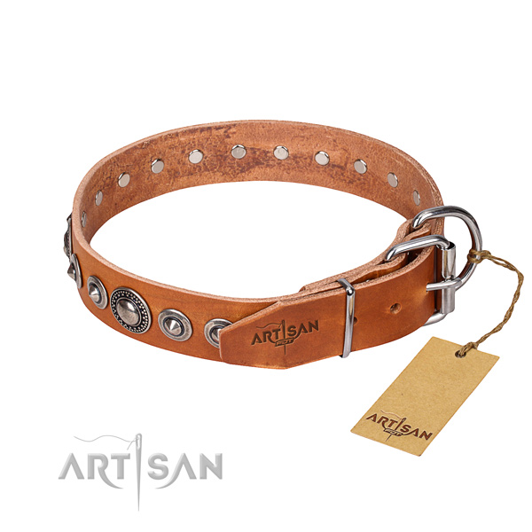 Studded Dog Collar buy uk