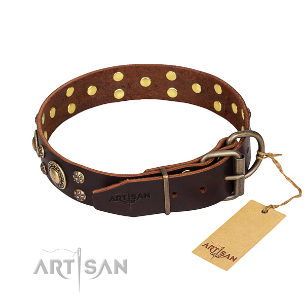 Brown Collar for Dog buy uk