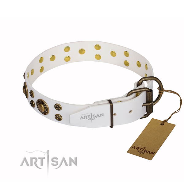 White Collar for Dog buy uk