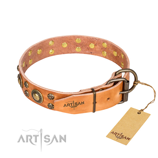 Tan Collar for Dog buy uk