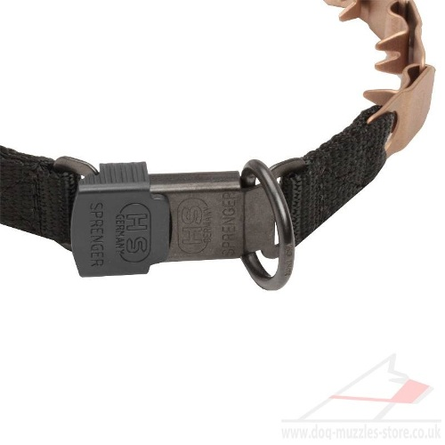 Best Best Anti Pull Dog Collar online uk