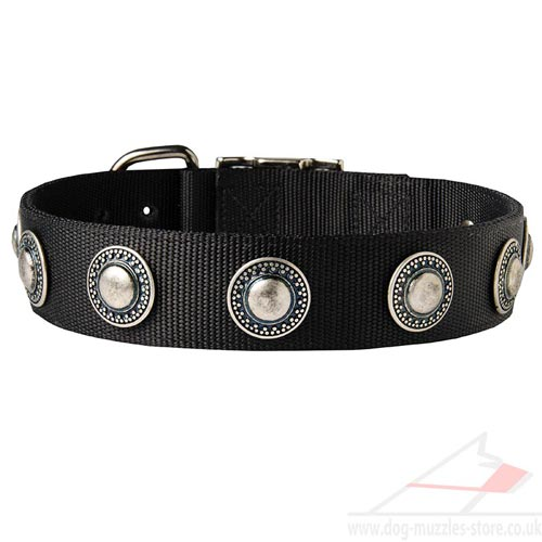 Nylon Dog Collar for German Shepherd