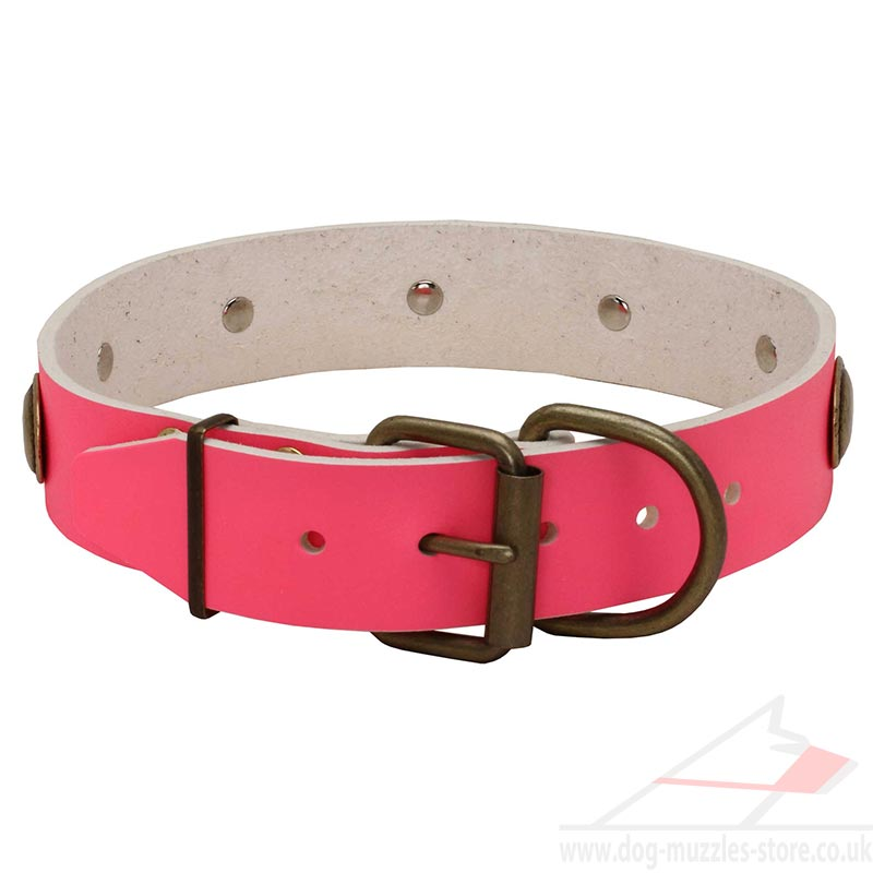 Designer Dog Collars Pink Leather With Brass Studs