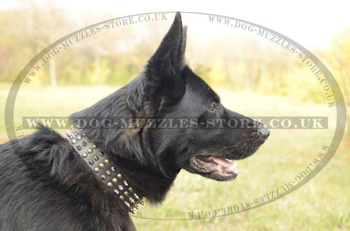 Dog Leather Collar for German Shepherd