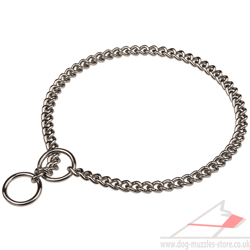 dog chain collar Herm Sprenger