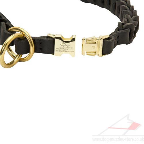 training dog collar choker