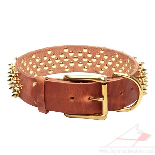 Leather Dogs Collars