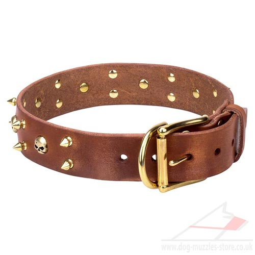 Elegant Dog Collar UK
