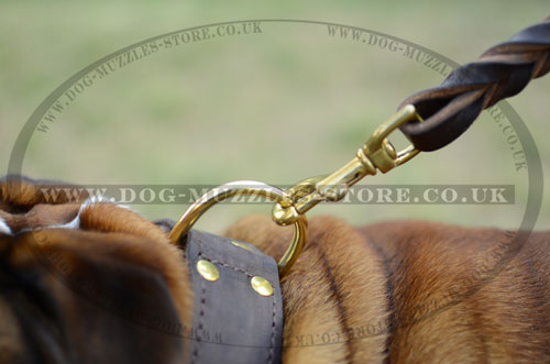 Extra Strong Dog Collar