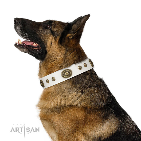 German Shepherd dog collar for sale