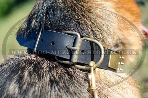 Luxury Dog Collars for German Shepherd Dog Breed