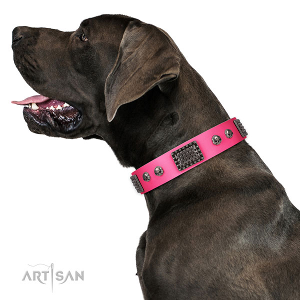 -great dane dog collar for sale