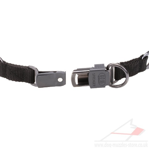buy pinch collar for dogs
