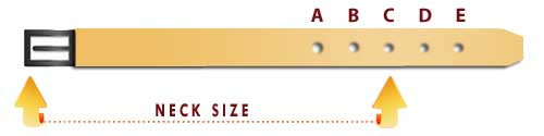 what size dog collar chart