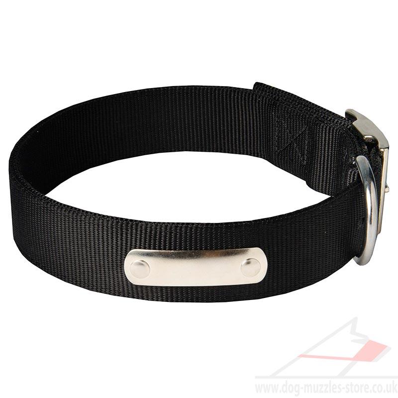Metal Plate Dog Collar