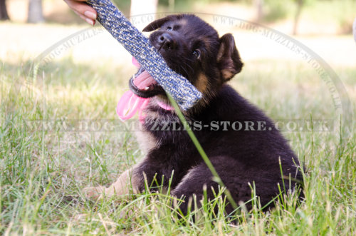 Dog Toy Tug for Interactive Training Your German Shepherd Puppy