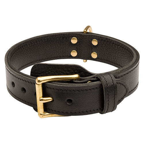 Agitation Dog Collar with Buckle