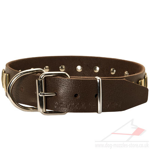 Leather Dog Collars for Large Dogs