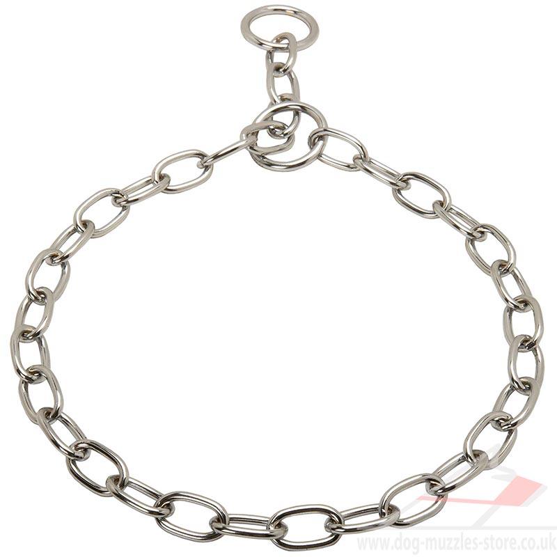 Chain Dog Collars Uk