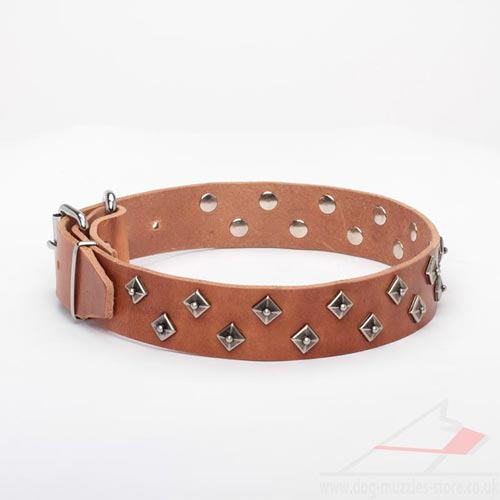 Natural Leather Dog Collar