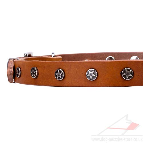 Dog Leather Collars UK